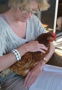 Yeppoon Jennifer Chicken 003 crop