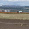 Liverpool Plains February 2007