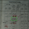 Photograph from log book of temperature recording as made at Bourke post office in January 1909.   Photograph taken by Jennifer Marohasy at National Archives of Australia, Chester Hill Reading Room, on 26 June 2014.