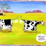 Trading Emissions