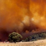 Defining the Greens (Part 16) and Bushfires