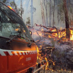 Hazard Reduction, Only Proven Bushfire Management Tool