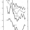 Fig 2.  Ten-year running averages of mean summer maximum temperature.